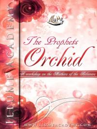 The Prophet's Orchid